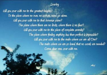 Soaring - poem